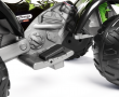 IGOR0100_Corral T-Rex 330W_pedal