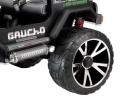 GauchoSP2014_shockabs